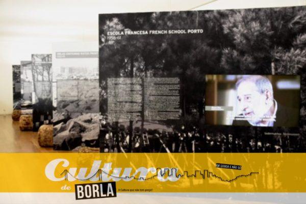 C_03_10_Cultura de Borla_thumb1